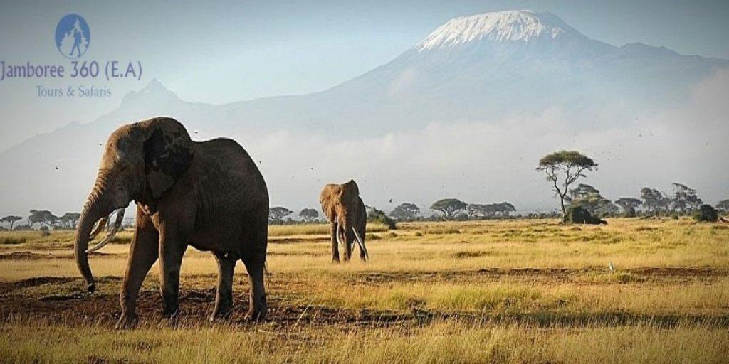 Amboseli National Park kenya travels