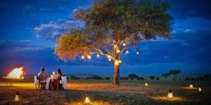 romantic honeymoon bush dinner kenya holiday